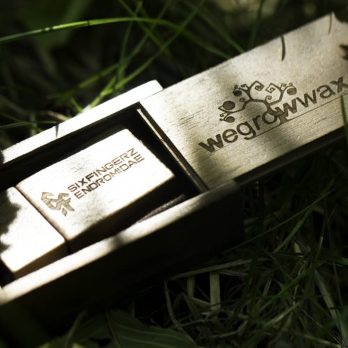 Limited Edition Wooden USB stick (Box Set)_6