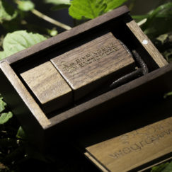 Limited Edition Wooden USB stick (Box Set)_4