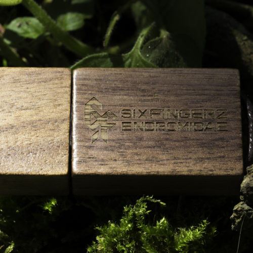 Limited Edition Wooden USB stick (Box Set)_3