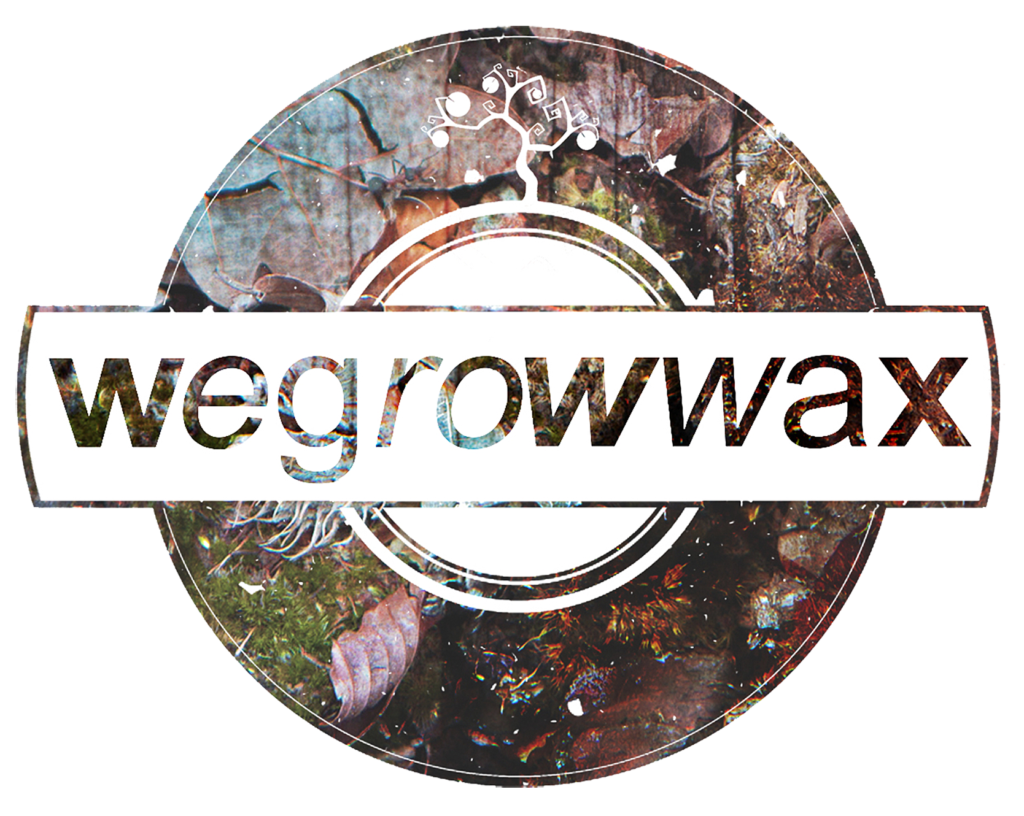 WeGrowWax - We Got it in Nature