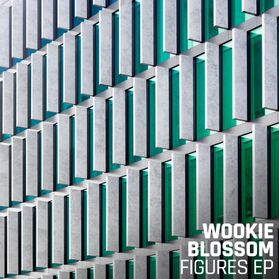 Wookie & Blossom - Figures EP